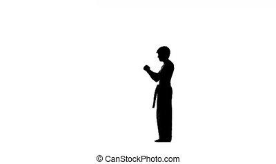 kung fu, karate, martial arts, Silhouette. nunchaku in his hands