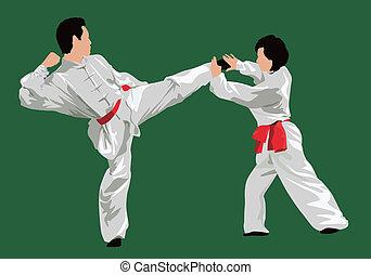 kung-fu, lucha