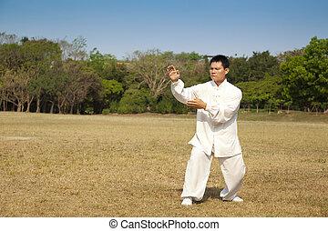 kung fu, man
