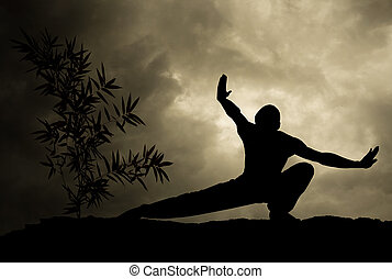Kung Fu Man practicing Martial Art Background