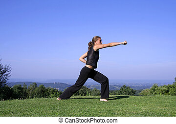 kung fu - punch - attractive young woman practicing self...