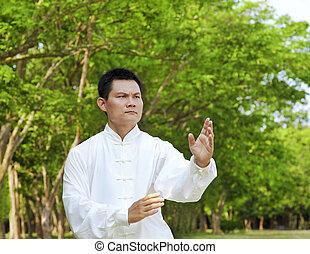 kung, kínai, fu