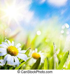 kunst, abstract, achtergrond, zomer, bloem, in, gras, met, waterdruppels, op, zon, hemel
