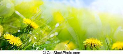 kunst, abstract, floral, lente, of, zomer, achtergrond, met, fris, gras, en, voorjaarsbloem