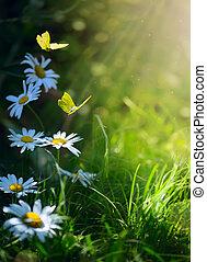 kunst, abstract, lente, achtergrond, of, zomer, achtergrond, met, verse bloemen, en, vlinder