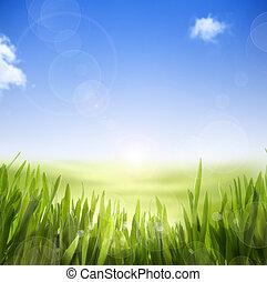 kunst, abstract, lente, natuur, achtergrond, van, lente, gras, en, hemel