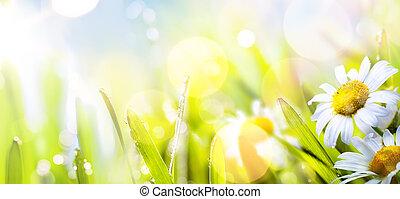 kunst, abstract, zonnig, springr, bloem, achtergrond