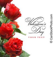 kunst, begroetende kaart, met, rode rozen, vrijstaand, op wit, achtergrond