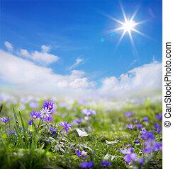 kunst, blomstrede, forår, eller, sommer, baggrund