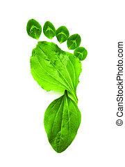 kunst, ecologie symbool, groene, voet printen