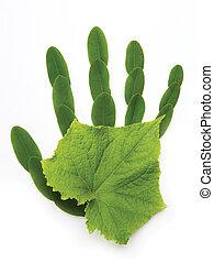 kunst, ecologisch, symbool, hand, van, natuur