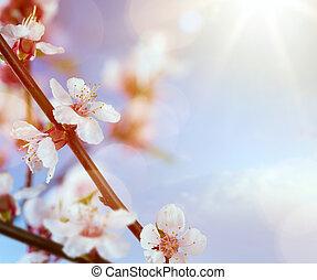 kunst, frühjahrsblumen, auf, der, blauer himmel, hintergrund