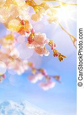 kunst, fruehjahr, hintergrund, mit, rosa, blüte