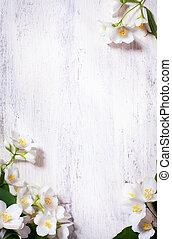 kunst, jasmijn, lentebloemen, frame, op, oud, hout,...