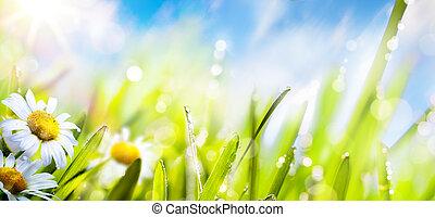 kunst, lente, zomer, bloem, achtergrond;, fris, gras, op, zon, hemel