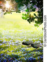 kunst, lente, zonlicht, bos, groene, tijd, pasen