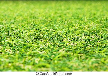 kunstige, grønnes græs, baggrund.