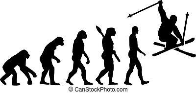 kunststück, evolutionsphasen, ski