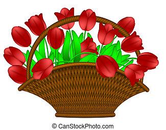 kurv, tulipaner, blomster, rød, illustration