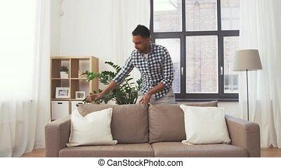 kussens, sofa, indiër, schikken, thuis, man