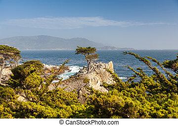 kusten, cruz, eiland, eiland, kerstman, californië