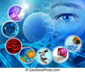 kutatás, orvosi
