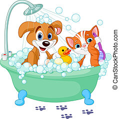kutya, és, macska, having fürdőkád