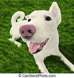 kutya, fű