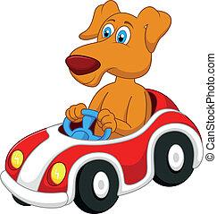 kutya, karikatúra, vezetés, autó