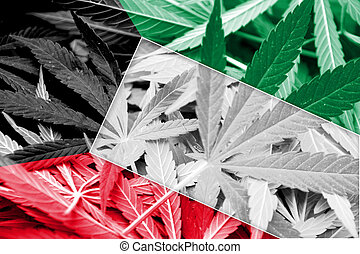Kuwait Flag on cannabis background. Drug policy....