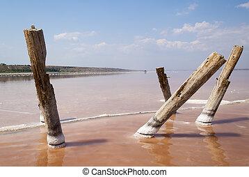 Kuyalnik salt beach - White salt beach with pink sea of...