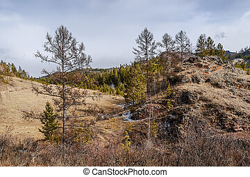Kuznetsk Alatu. - Early spring in the foothills of the ...