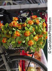 květ, jezdit na kole