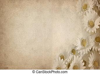květ, pergamen