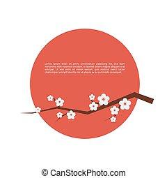 květ, sakura, karta, pozdrav
