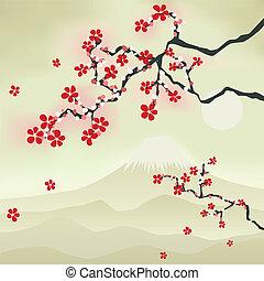 květ, třešeň, japonština