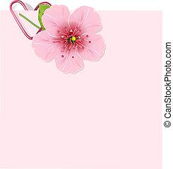 květ, třešeň, litera