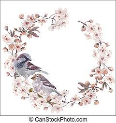 květ, třešeň, pohled, vrabec