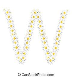 květena, abeceda, vektor, design, sedmikráska, illustartion