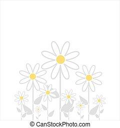 květinový, grafické pozadí.