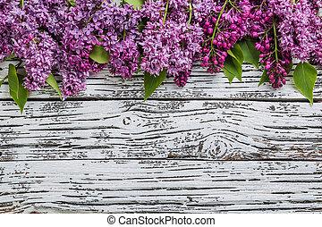 květiny, šeřík