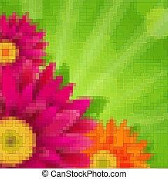 květiny, karta