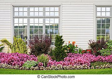 květovat zahradní, barvitý