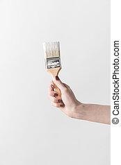 kvinde, image, isoleret, klippet, maling børst, holde, hvid