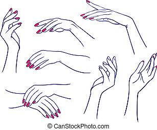 kvinde, sæt, hænder
