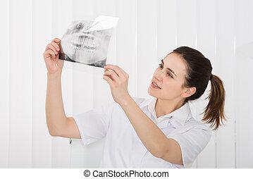 kvindelig, tandlæge, kigge hos, dental x-ray