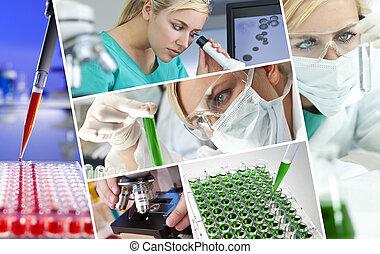 kvindelig, videnskabsmand, doktor, ind, forskning...