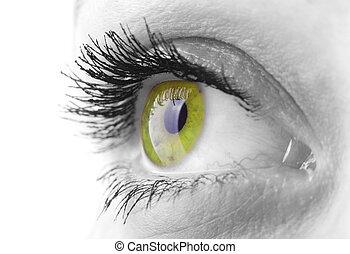 kvinna öga
