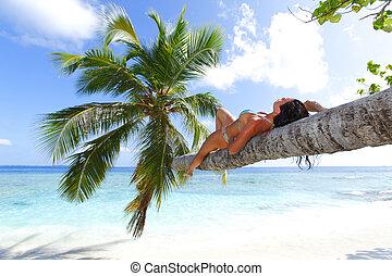 kvinna, backgroud, palm, hav