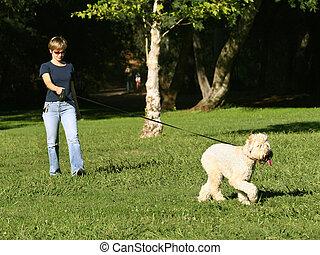 kvinna, hund, henne